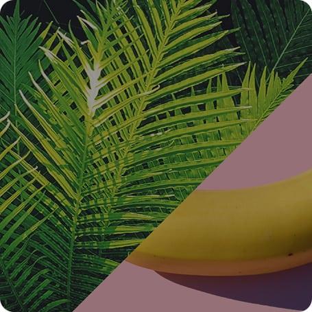 Banana Color - Content Hub