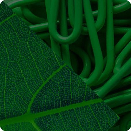 GreenBox Color - Content Hub