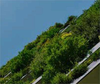 Greenery large 1 - Xtra-Mile Homepage